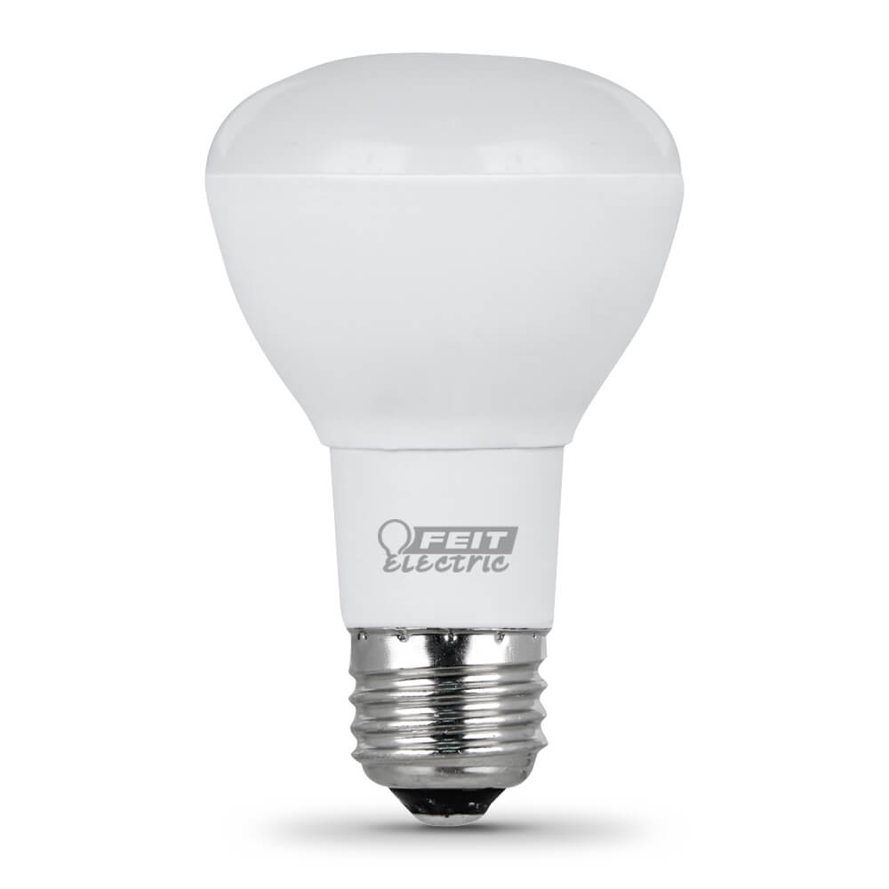 Feit Electric String Lights Replacement Bulbs : 450 Lumen 2700K Dimmable LED R20 - Feit Electric