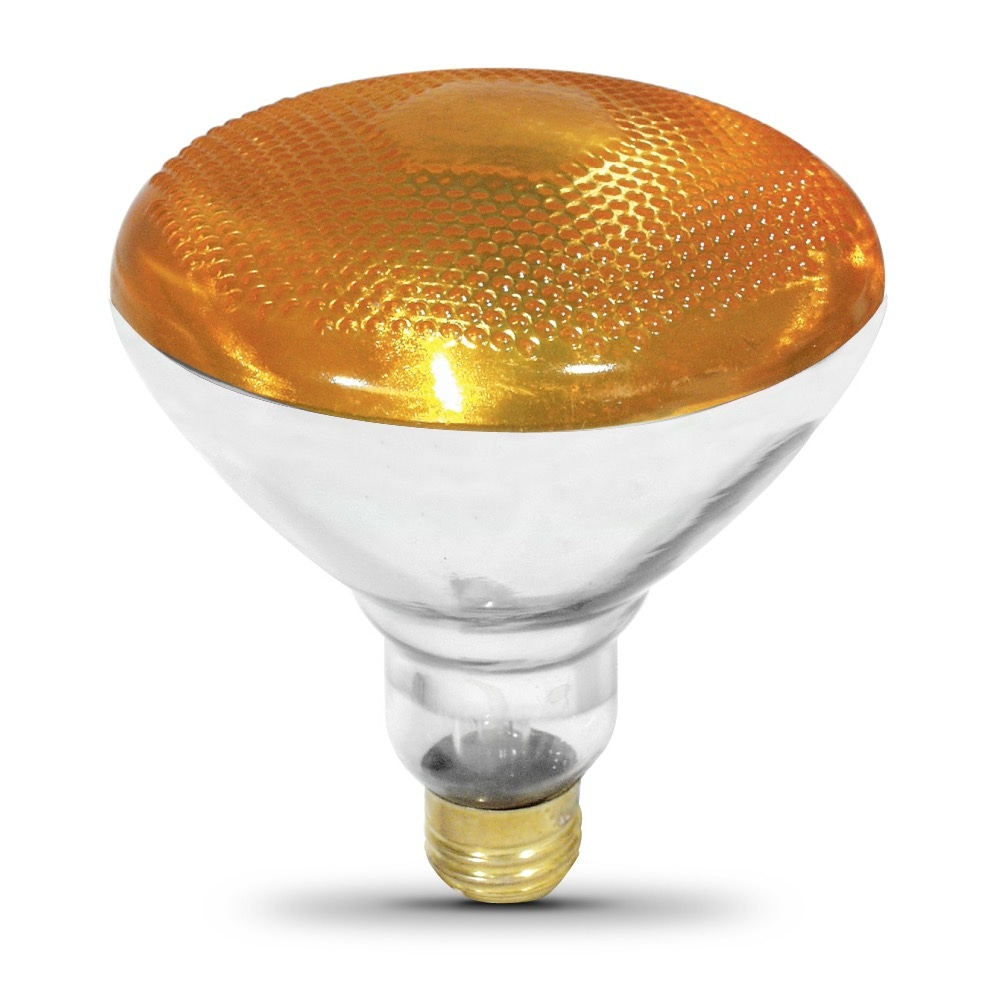 100 Watt Incandescent PAR38