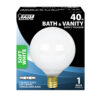 Feit Electric incandescent globe light bulb