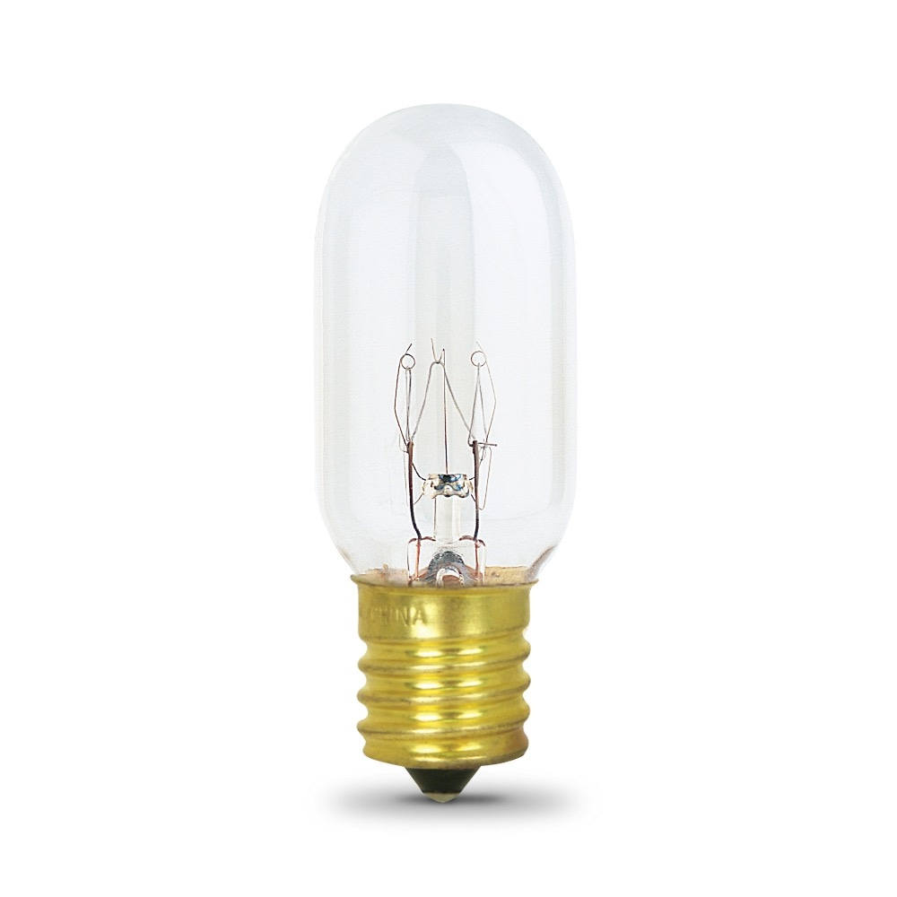 40 Watt Incandescent T8 Feit Electric