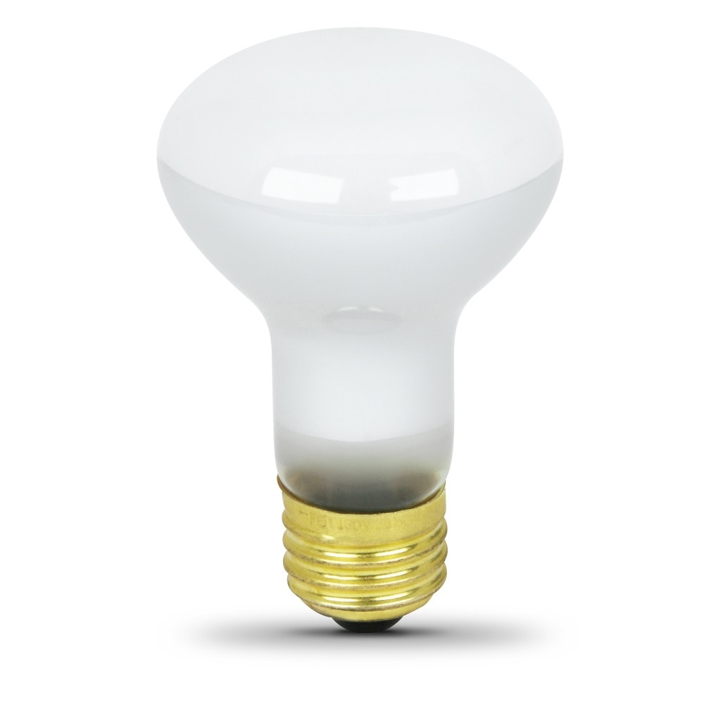 45 Watt Incandescent R20