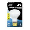 45 Watt Soft White Frost R20 Dimmable Incandescent Flood Light Bulb