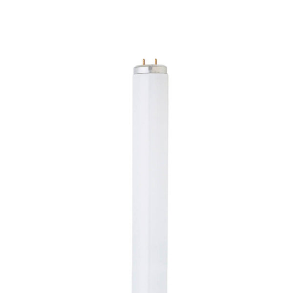 40W 4ft. Fluorescent T12 2-Pack