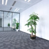 LED linear lights in office