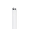 F96T12/CW/HO/CT 8800 Lumen T12 Cool White High Output Fluorecscent light bulb - Feit Electric